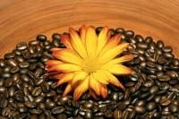 победитель целлюлита - кофейный скраб