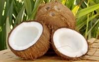 кокосовое масло применение для лица