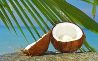 отличное средство для лица - кокосовое масло