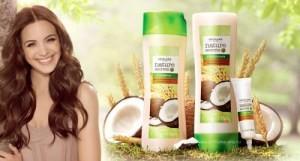 где купить сколько стоит кокосовое масло